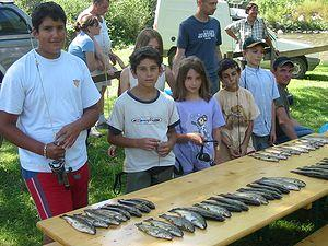 Partie de pêche à la truite au Camping en Cerdagne